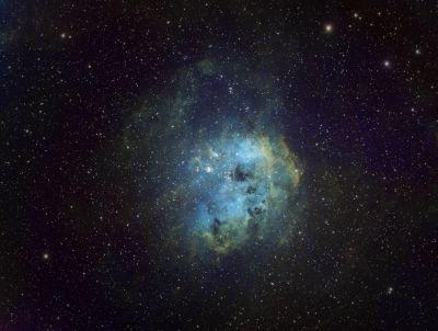 IC 410 - Головастики - астрофотография