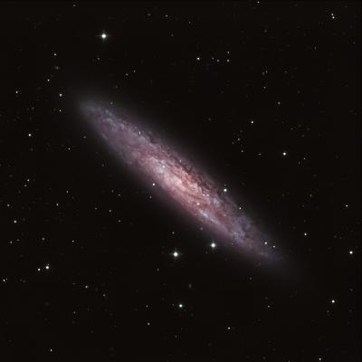NGC 253 - Галактика Скульптора (Серебряная Монета)  - астрофотография