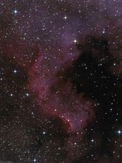 NGC7000 Часть туманности Северная Америка в созвездии Лебедя. - астрофотография