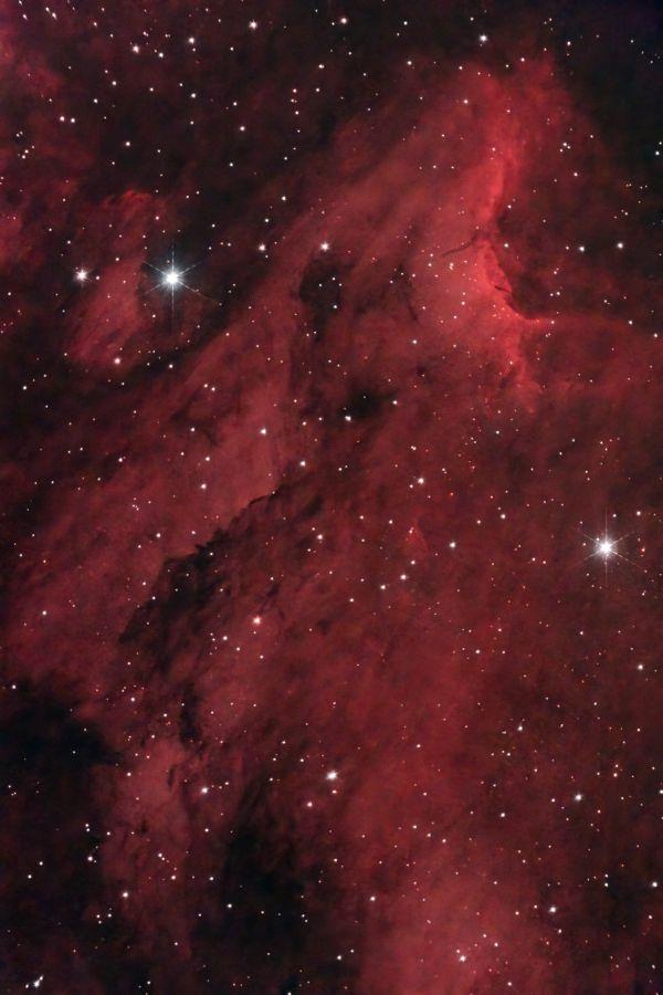 IC5070 Пеликан крупным планом - астрофотография