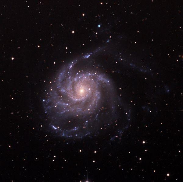 m101 Вертушка (подкопил еще 6 часов) - астрофотография