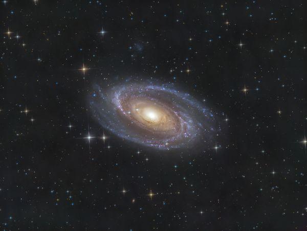 M81 & UGC 5336 - астрофотография