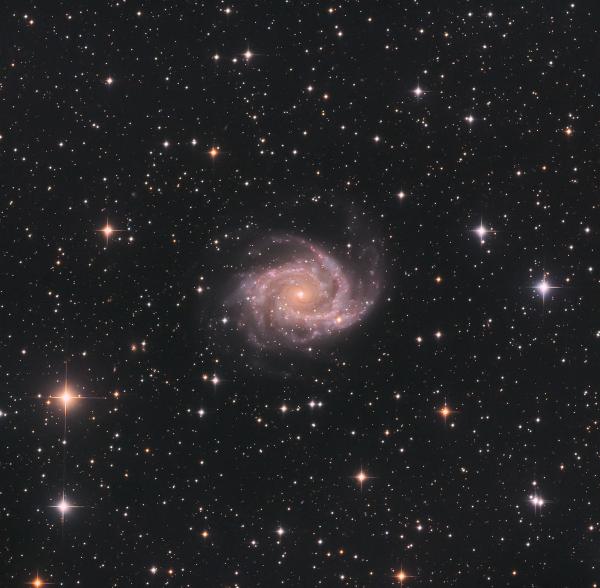 Галактика NGC 2997 в созвездии Насос - астрофотография