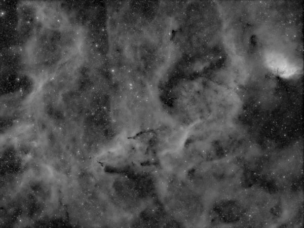 Central area of the swan (near B 147) - астрофотография