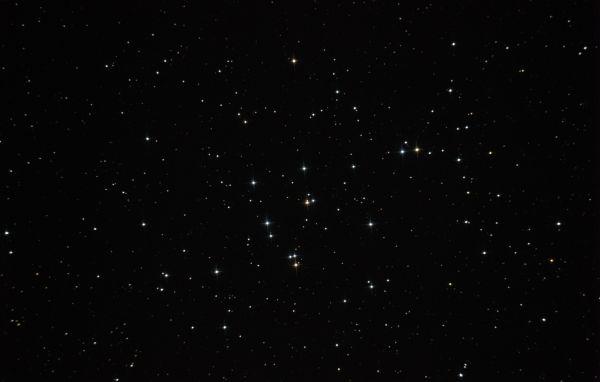 М44 - Ясли - астрофотография