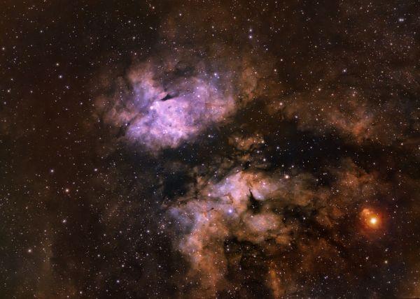 Туманность Бабочка в созвездии Лебедя - астрофотография