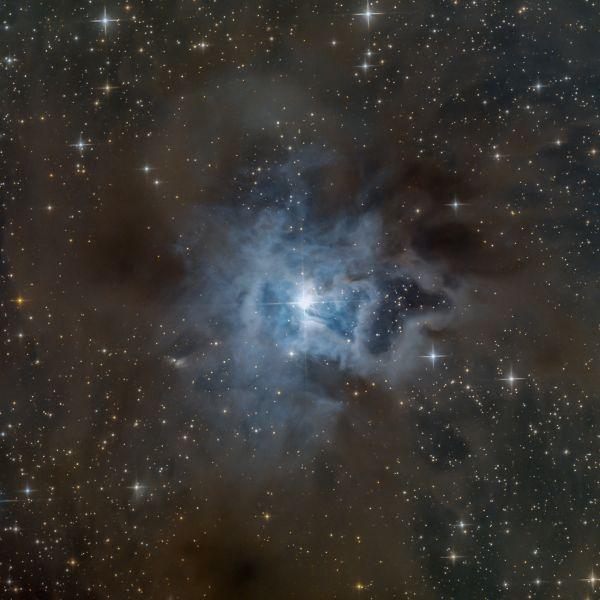 NGC 7023, Iris nebula - астрофотография