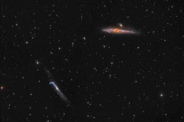 NGC4631(Whale) & NGC4656(Crowbar) - астрофотография