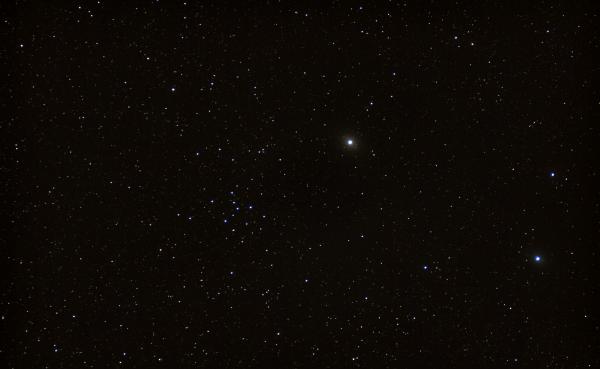 "IC4665 ""Summer Beehive Cluster"" - астрофотография"