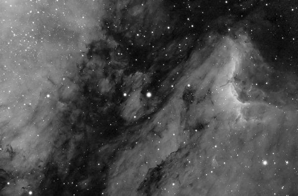 Пеликан (ver2, меньше контраста) - астрофотография