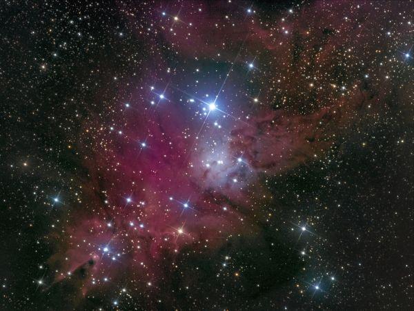 NGC 2264 (Новогодняя елка) - астрофотография