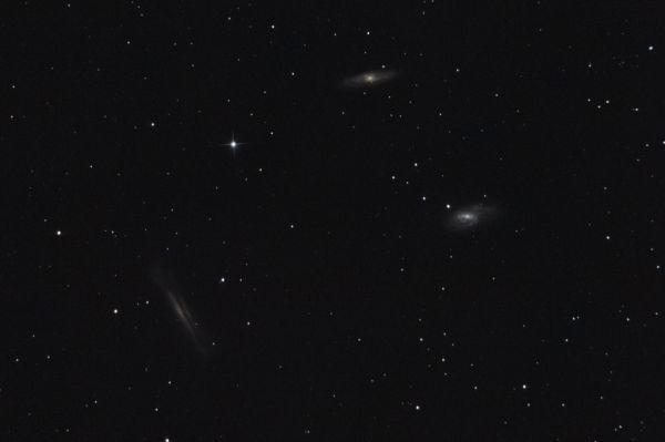 LEO TRIPLET M65 M66 NGC 3628 - астрофотография