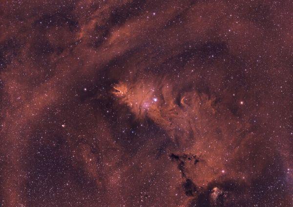 Туманность Лисий мех (она же Шишка) - астрофотография