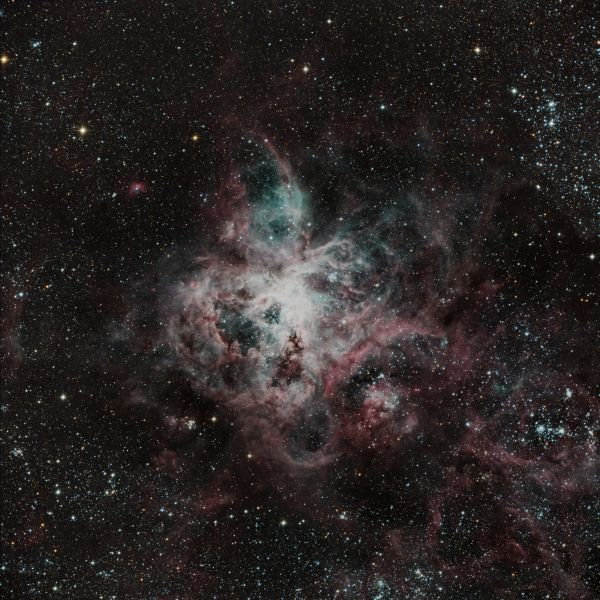 NGC 2070 (Туманность Тарантул) - астрофотография
