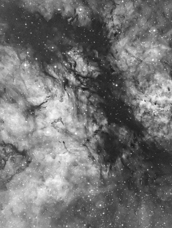 The Butterfly Nebula in Sadr Region (IC 1318) in H-a narrowband - астрофотография