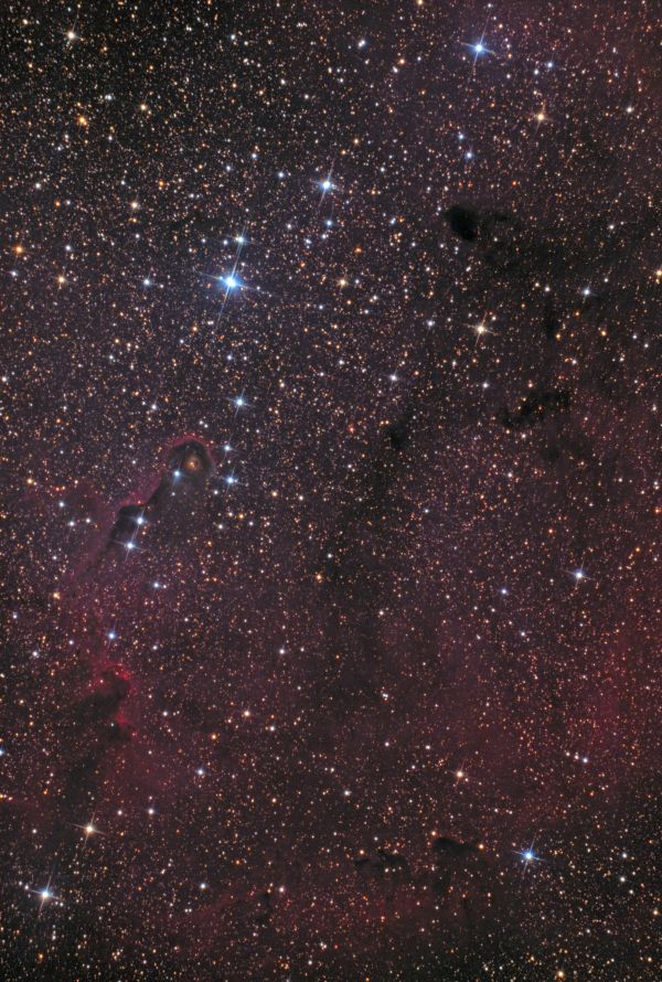 "IC 1396, IC 1396A (""Туманность Хобот слона""), VdB 142, B 161 - астрофотография"