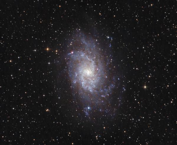 TRIANGULUM GALAXY M33 - астрофотография
