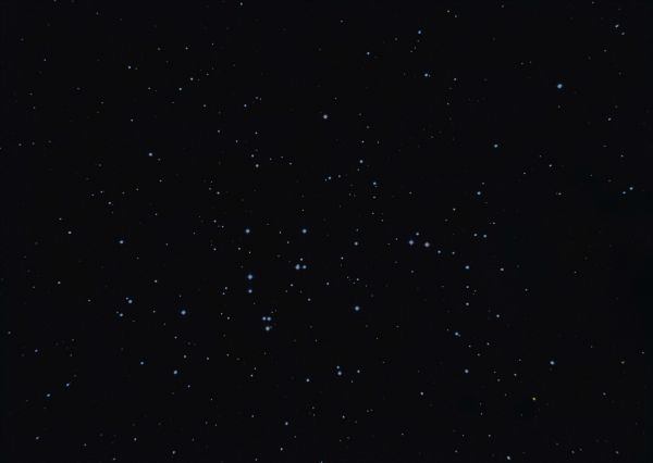 Praesepe M44 - астрофотография