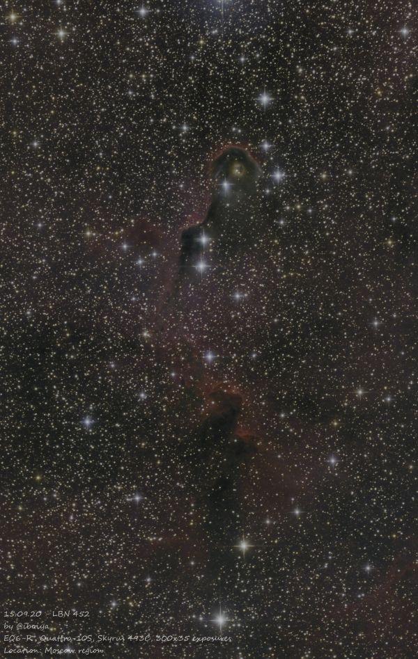 LBN 452 Elephant Trunk nebula - астрофотография