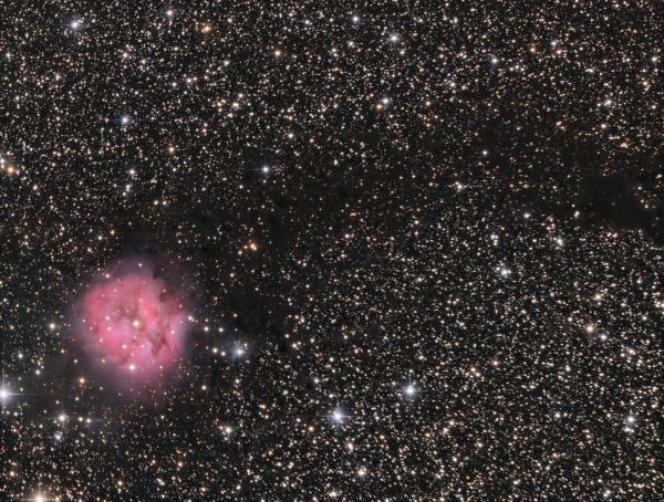 NGC 5146 Cocoon nebula LRGB - астрофотография