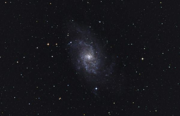 The Triangle Galaxy (M 33, NGC 598) - астрофотография