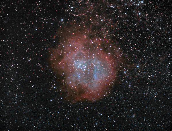 Звездное скопление NGC 2244 в туманности Розетка NGC2238(37) - астрофотография
