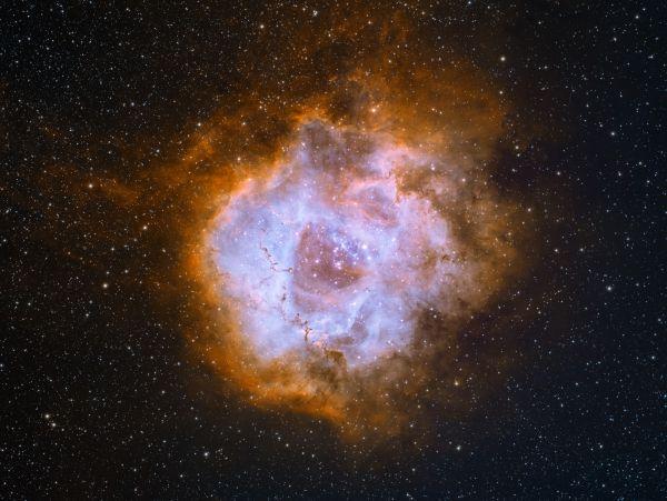 Розетка NGC2238 - астрофотография