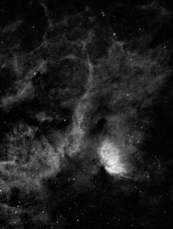 SH2-101 (туманность Тюльпан) в Лебеде - астрофотография