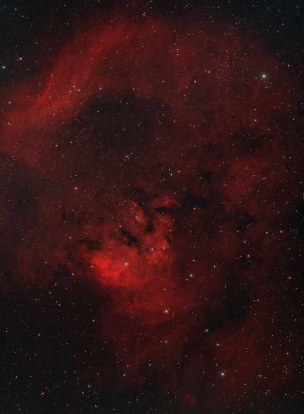NGC 7822 - астрофотография