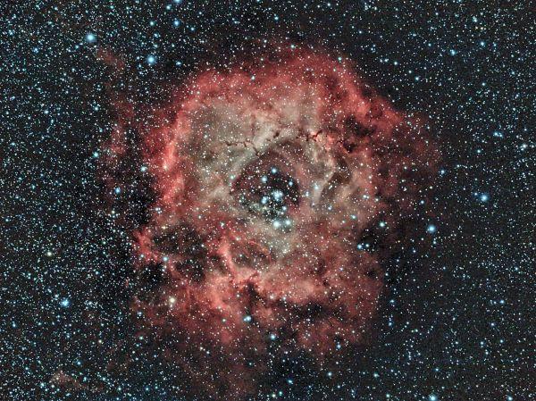 NGC2244-The Rosette Nebula in OSC - астрофотография