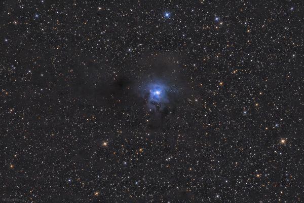 Отражательная туманность Ирис NGC 7023 - астрофотография