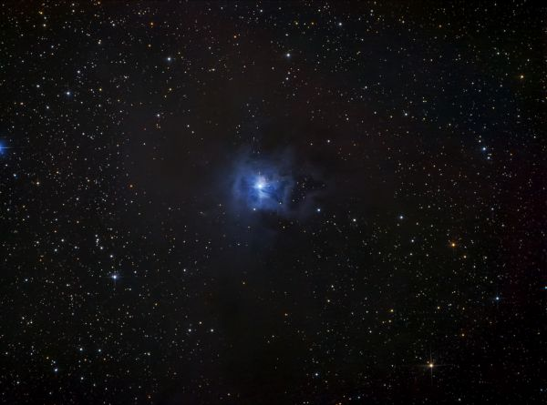 NGC7023. Iris Nebula. - астрофотография