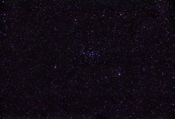 M44 - Beehive Cluster / Praesepe - астрофотография