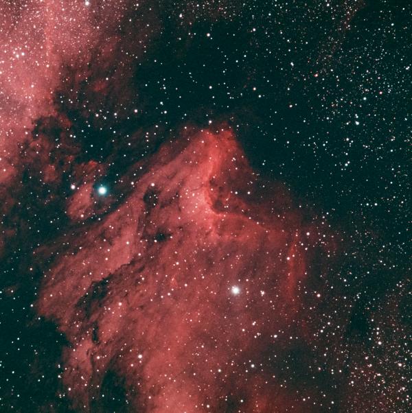 IC 5070 (Пеликан) - астрофотография