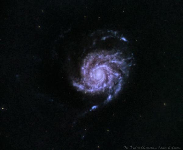 Неудачная М101 из зеленой зоны - астрофотография