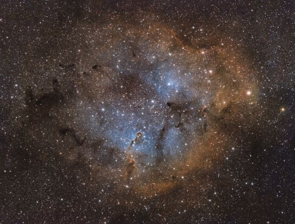 Хобот Слона IC 1396 - астрофотография