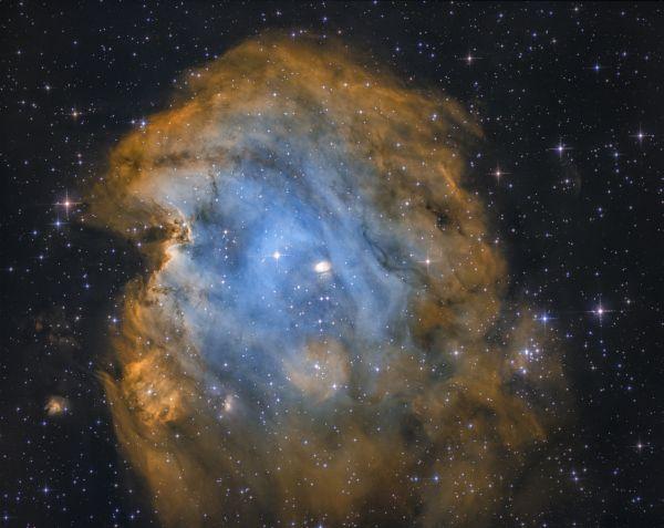Monkey head nebula - астрофотография
