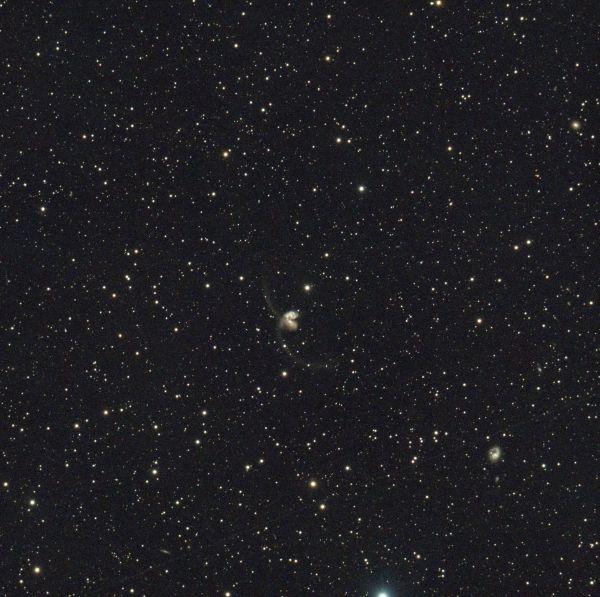 NGC 4038, 4039  - астрофотография