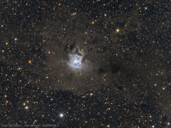 Туманность Ирис (NGC 7023). - астрофотография