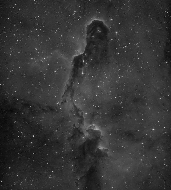 IC 1396, Elephant's Trunk nebula - астрофотография