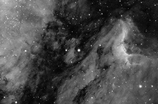 Пеликан, фрагмент - астрофотография