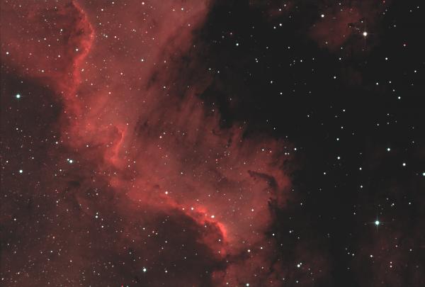 NGC7000. Туманность Северная Америка. - астрофотография