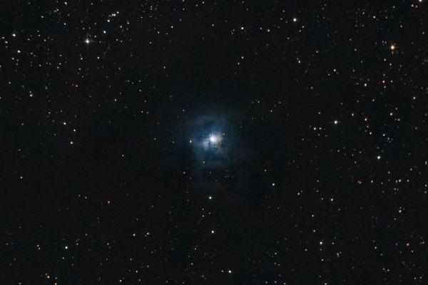 NGC 7023 (Iris)  - астрофотография