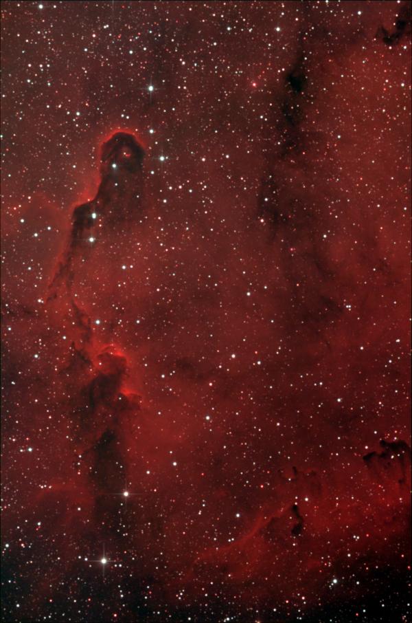 IC 1396A. Туманность Хобот Слона. - астрофотография