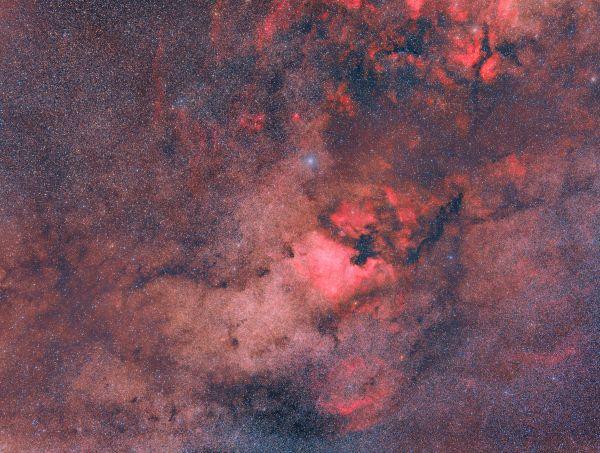 NGC 7000, IC 5070, Sadr and surroundings - астрофотография
